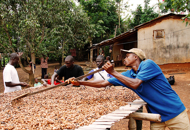 To improve living conditions of cocoa farmers and their families and to contribute to a secure living —